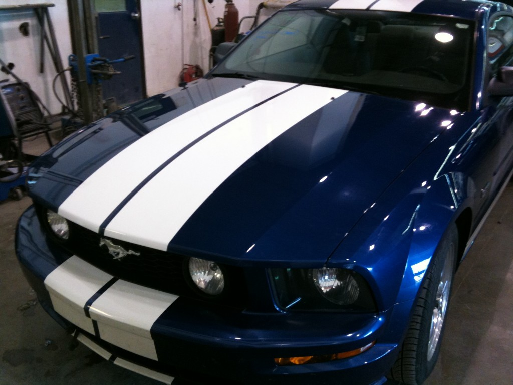 Paintless Dent Repair Blue Mustang